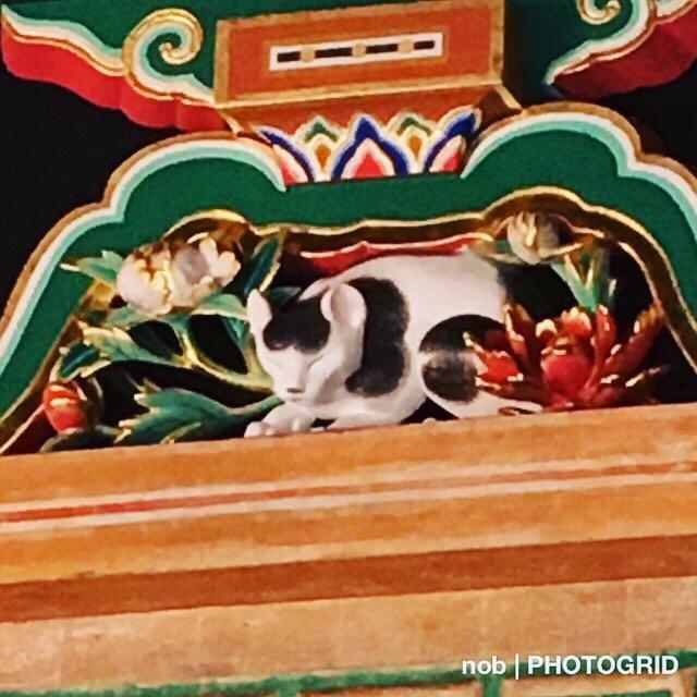 眠り猫。.眠り猫のある場所は、東回廊の中ほど。家康が眠る奥宮の参道入り口。.三猿に比べたら、めっちゃ小さい印象でした〜(゚ロ゚).ココで撮影していたら、偶然日光東照宮で結婚式を挙げる夫婦が眠り猫をバックに記念撮影をしに来て、驚きました♪#日光東照宮 #眠り猫